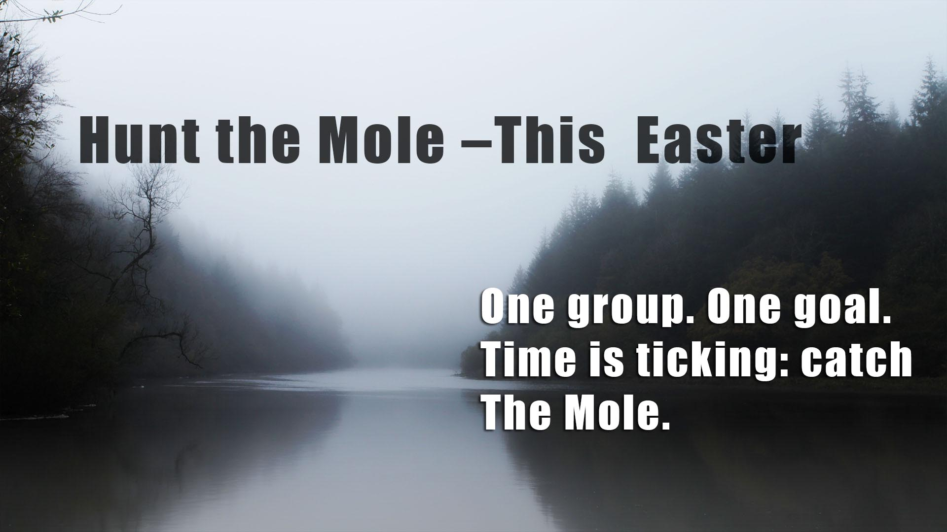 Flyer image for Hunt the mole event at Mulvarra House